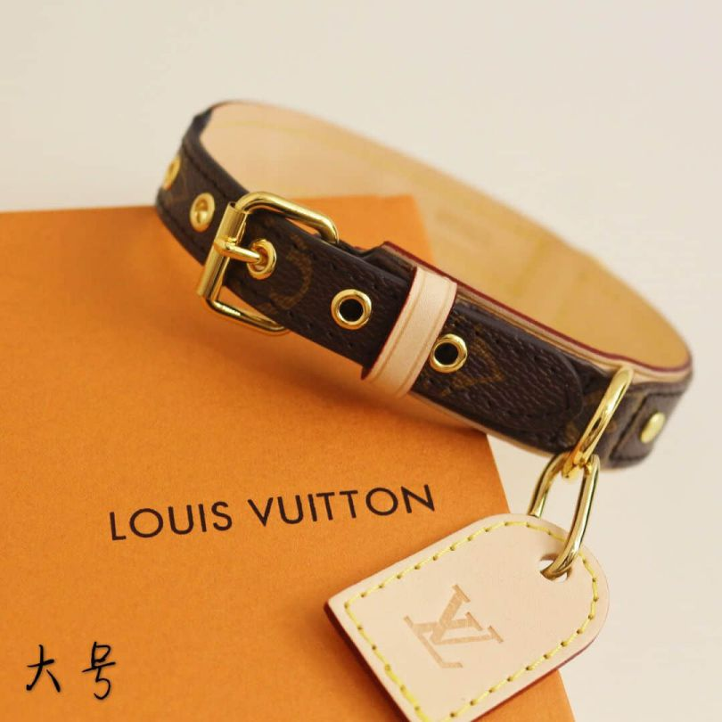 LV BAXTER DOG COLLAR PM Necklaces